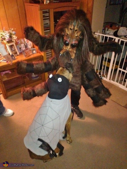 Tarantula Boy Homemade Costume