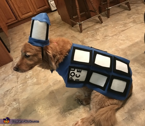 Tardis Dog Costume