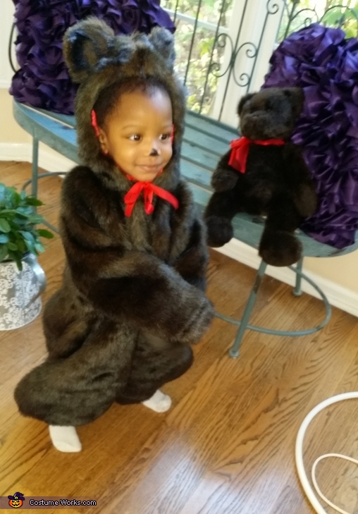 Twin Teddies, Teddy Bear Costume