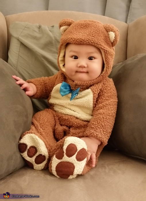 Its not easy being a Bear, Teddy Bear Baby Costume