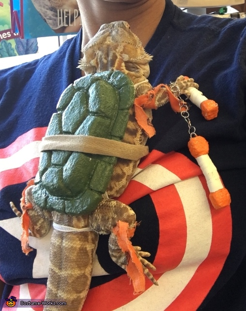 Tmnt Michelangelo Bearded Dragon Costume Photo 2 5 : costumes for bearded dragons  - Germanpascual.Com