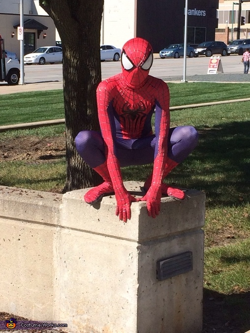 The Amazing Spiderman Halloween Costume