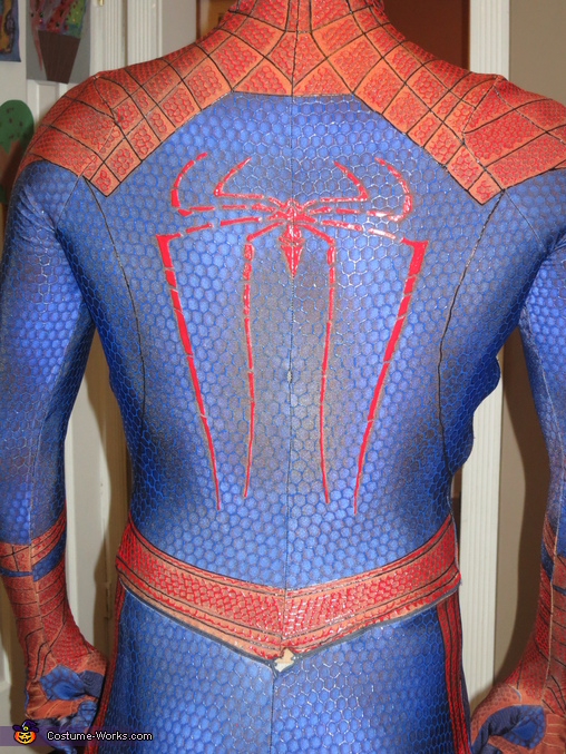 The Amazing Spiderman Costume