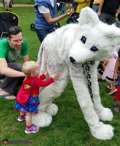 wonder woman meets wolf, The Arctic Wolf Costume
