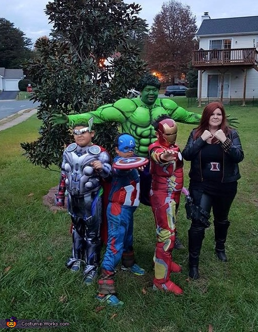 The Avengers Family Costumes