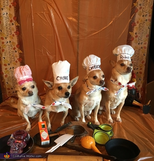 The Barking Chefs Costume