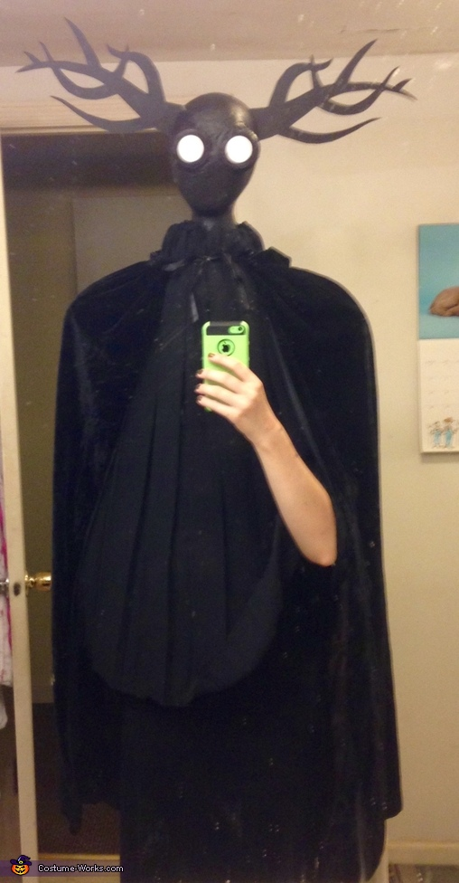 The Beast Adult Costume