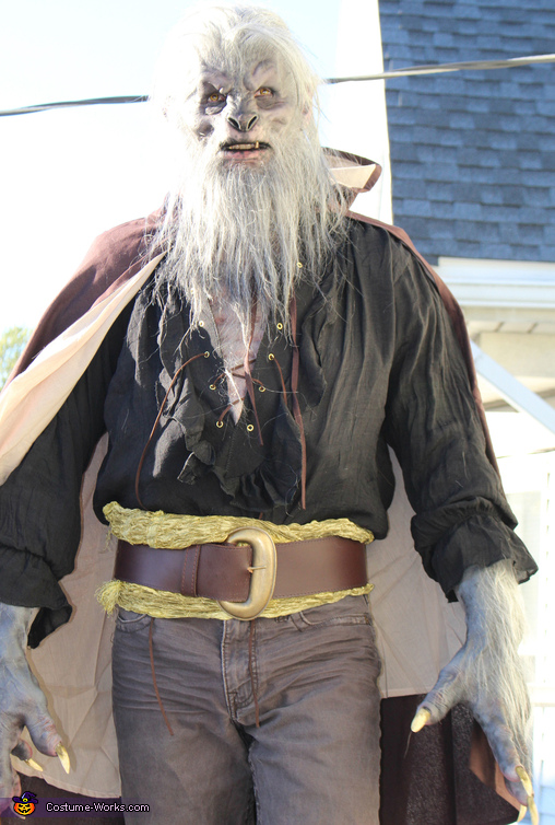 The Beast Costume
