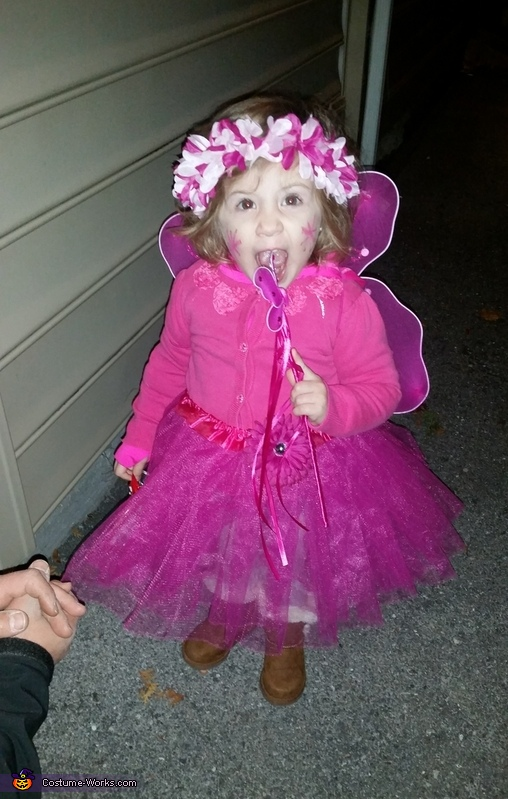 Love in the eyes of a fairy, The Beautiful Fairy Costume