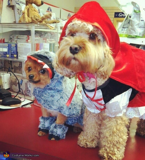 The Big Bad Wolf and Little Red Riding Hood Costume