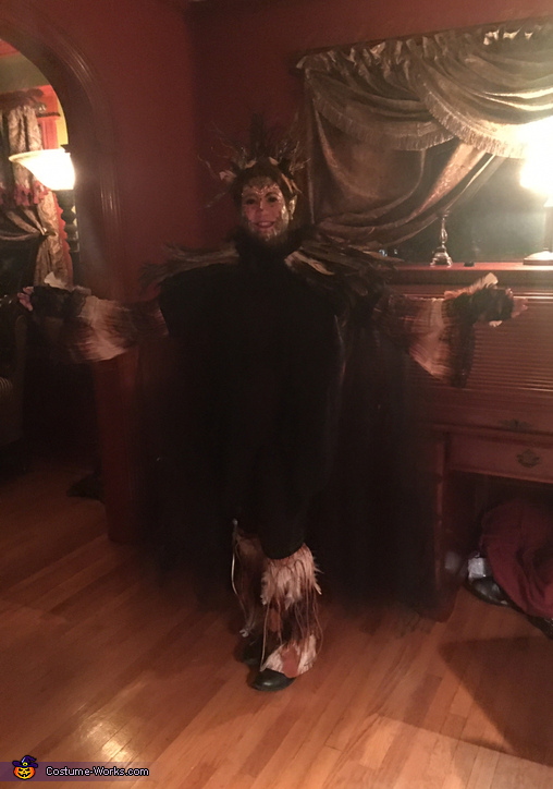 Full bird, The Bird Woman Costume