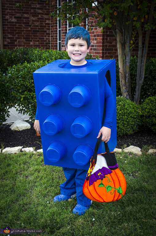 The Blue Lego Costume Diy Costumes Under 35