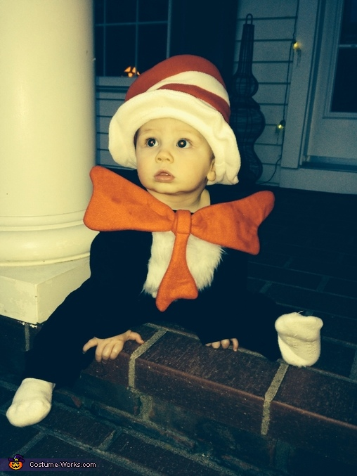 The Cat in the Hat Homemade Costume