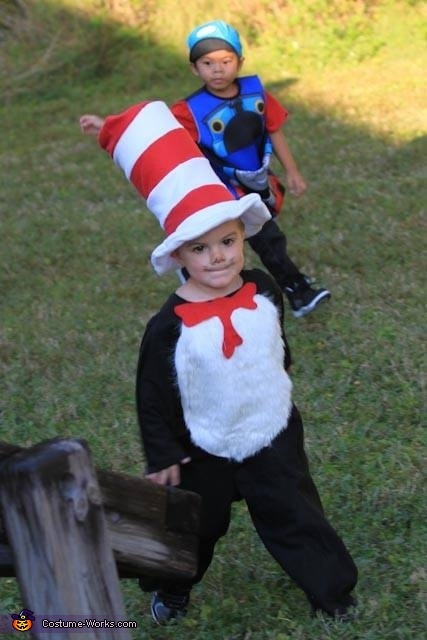 The Cat in the Hat, The Cat in the Hat Costume