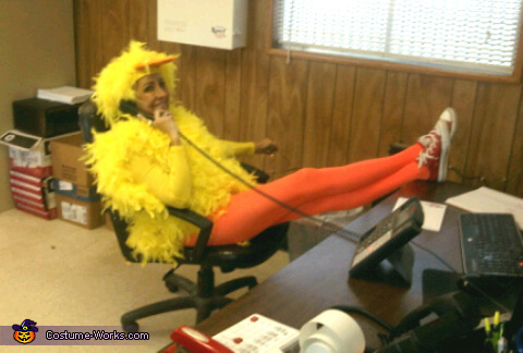 The Chick Costume