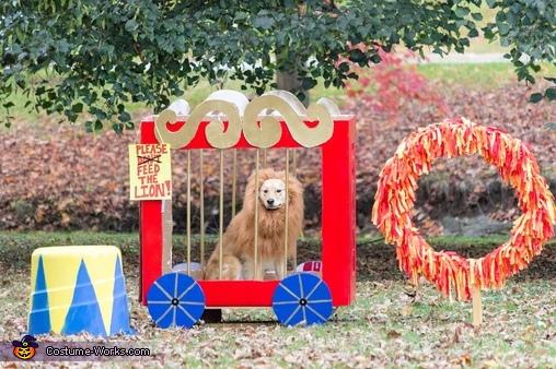 The Circus Mutt Costume