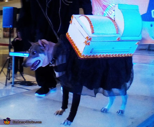 """The Coffin"" Dog Costume"