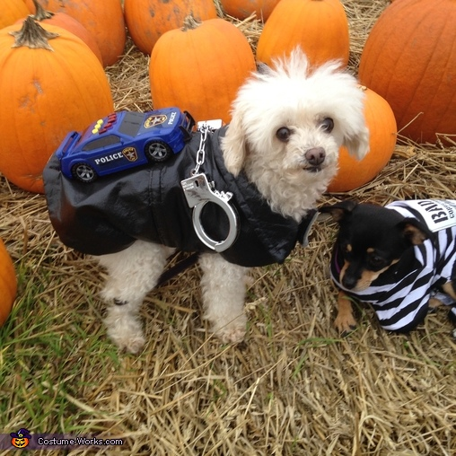The Convict and the Police Dogs Costume