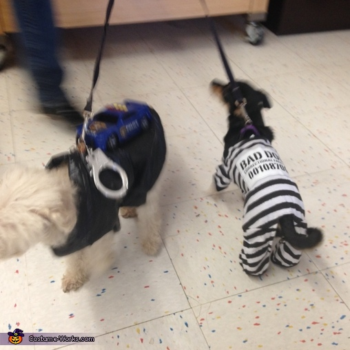 Choupette and Leyla, The Convict and the Police Dogs Costume