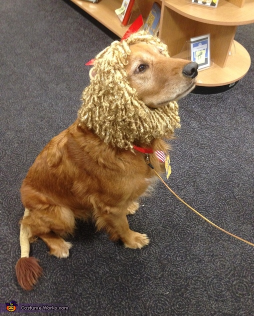 The Cowardly Lion Costume