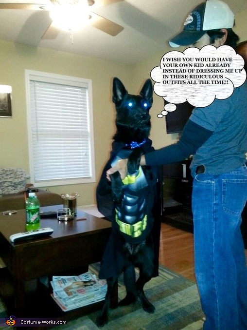 I wish you'd have your own kid already!, The Dark Knight Batman or Batdog Costume