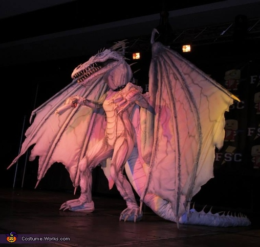 The Dragon from Harry Potter Costume