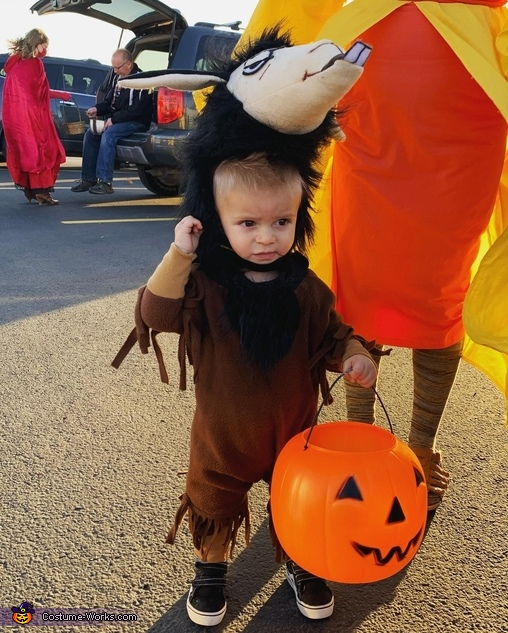 The Emperor's New Groove Homemade Costume