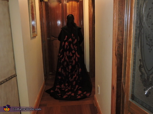 The cape has black and red feathers with silver lining in between., The Evil Queen Costume