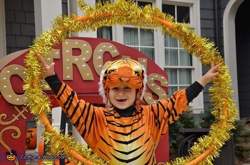 The Tiger, The Family Circus Costume