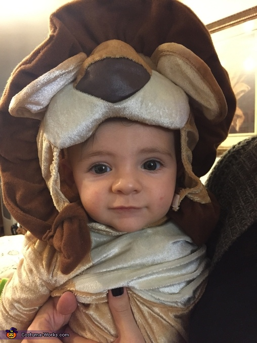 The Ferocious Lion Homemade Costume
