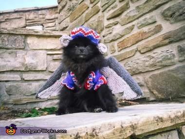 The Flying Monkey Dog Costume