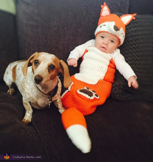 the fox and the hound costume