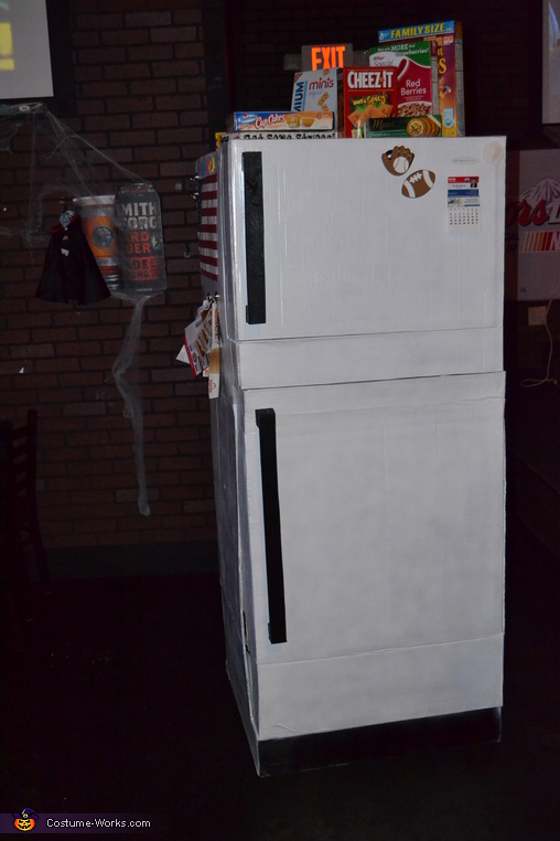 The Fridge Homemade Costume