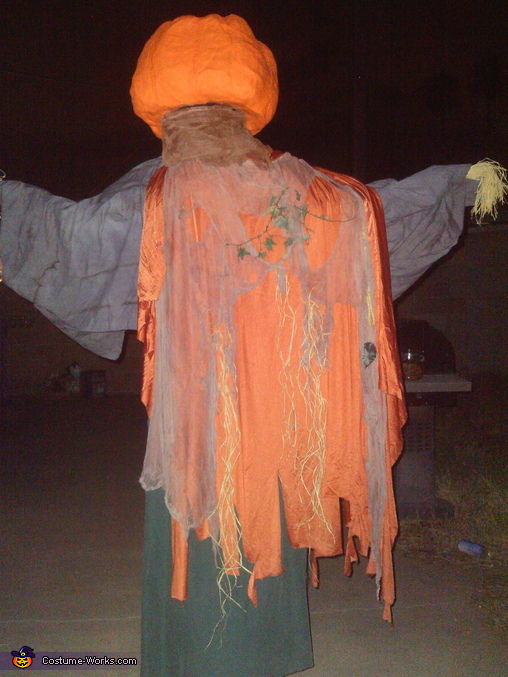 The Geat Pumpkin Homemade Costume