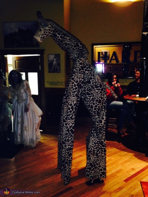 The Giraffe Costume