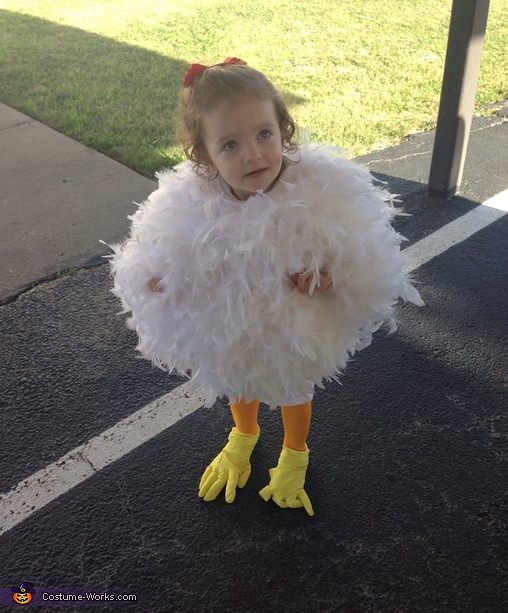 Cutest Chick Ever!, The Grand Champion Chicken Baby Costume