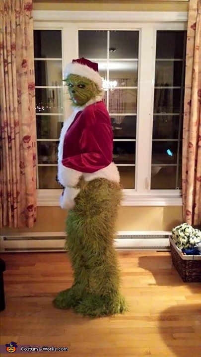 full body, The Grinch Costume