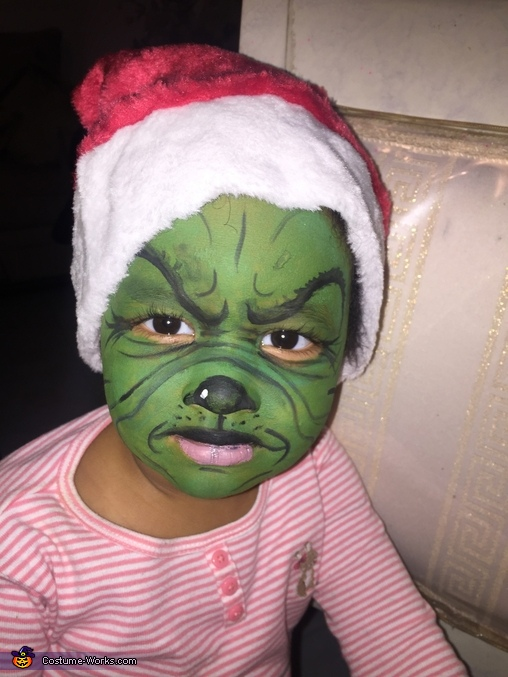 The Grinch Cindy Lou Who And Max The Dog Family Costume