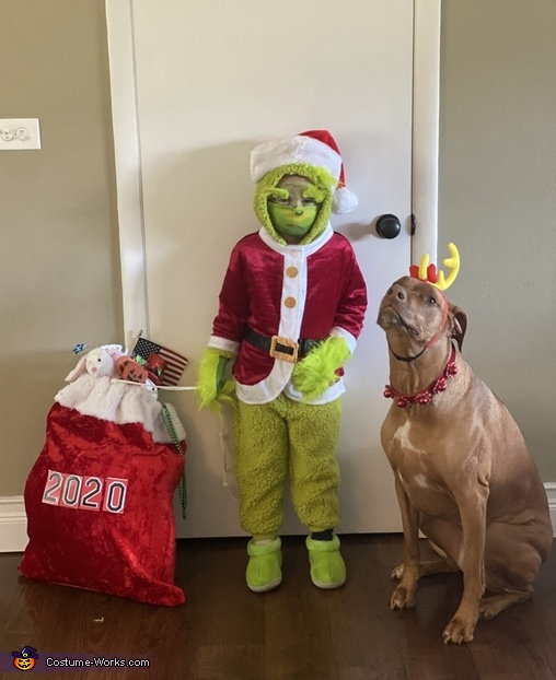 The Grinch Who Stole 2020 Costume