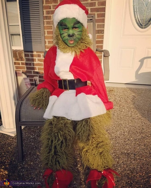 The Grinch who Stole Christmas Costume