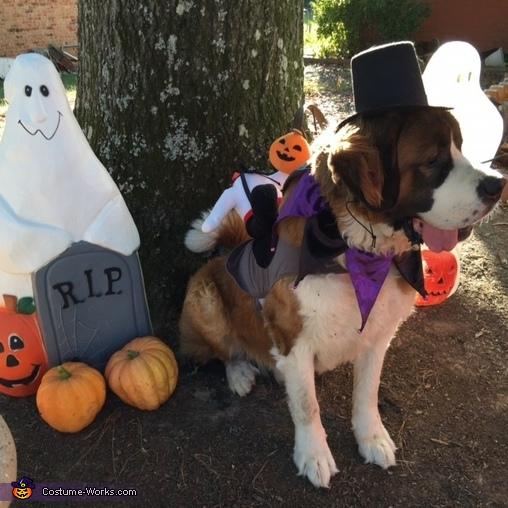 The Headless Horseman Rides Again Dog Costume