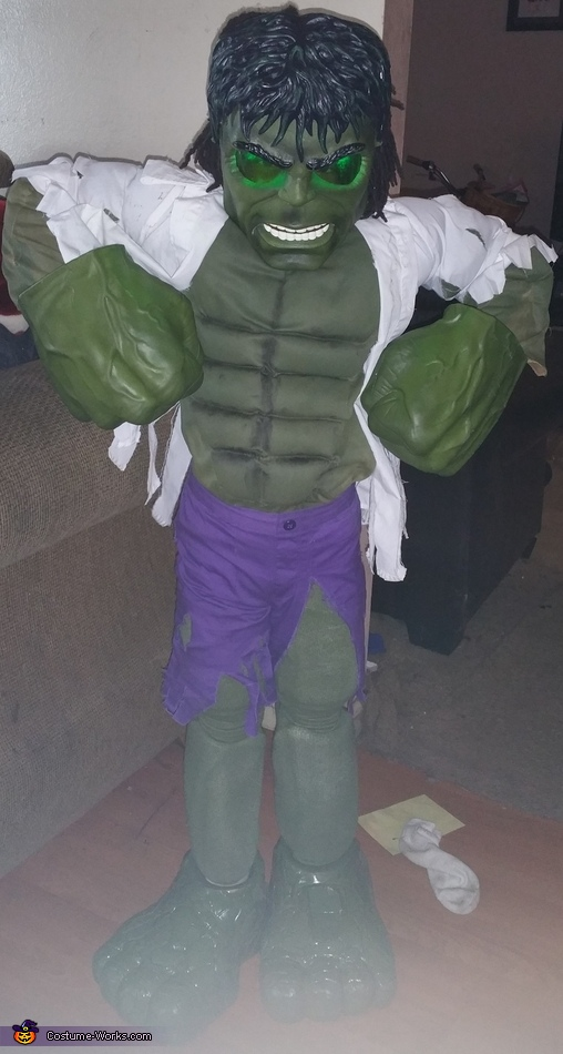 The Incredible Hulk Homemade Costume