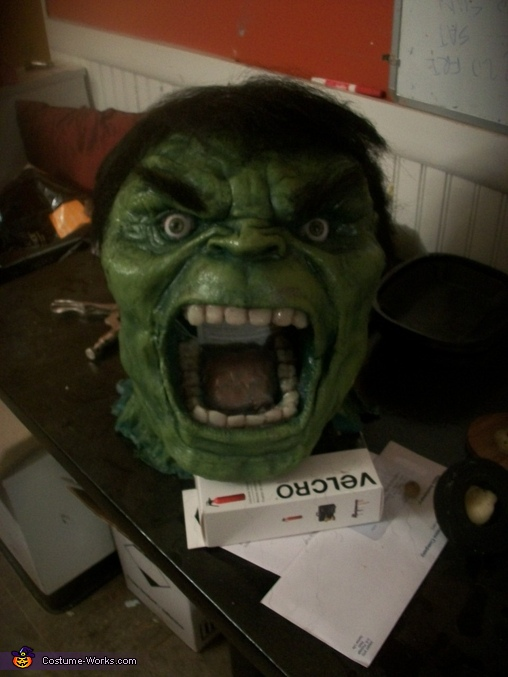 Day 62: Same steps were used to make the head. In addition, clear resin tinted for the teeth, synthetic hair glued on in layers. I bought his glass eyes. (I could look out his mouth to see, but I used a paint can to hold up the head for the pic.), The Incredible Hulk Costume