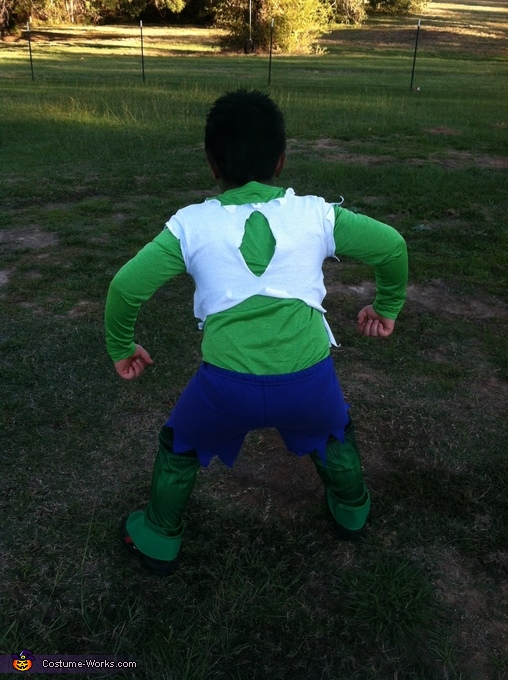 Rooooaaarrrrr!!!, The Incredible Hulk Costume