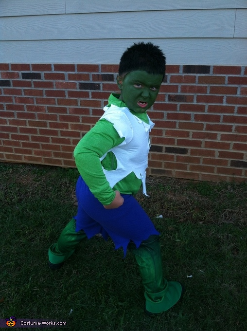The Incredible Hulk Costume