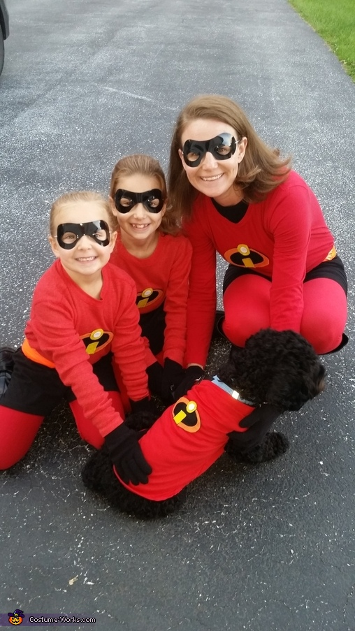Girl Incredibles, The Incredibles Costume