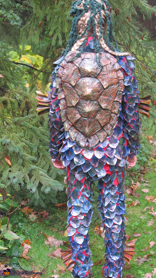 Full rear view, The Kappa Costume