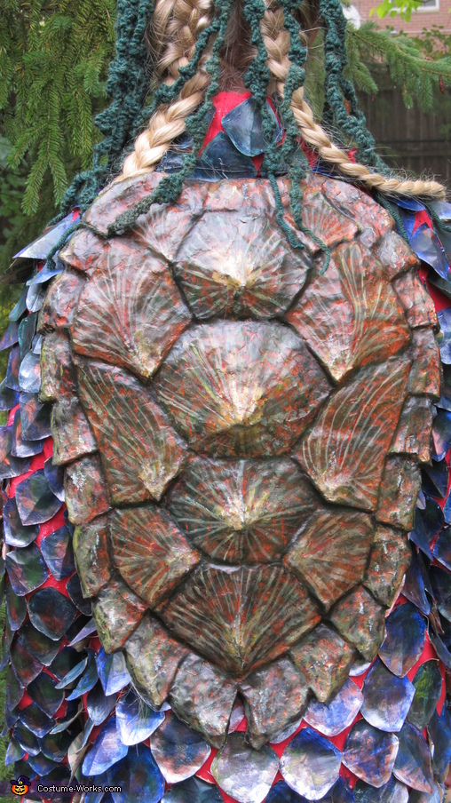 Close up of shell, The Kappa Costume