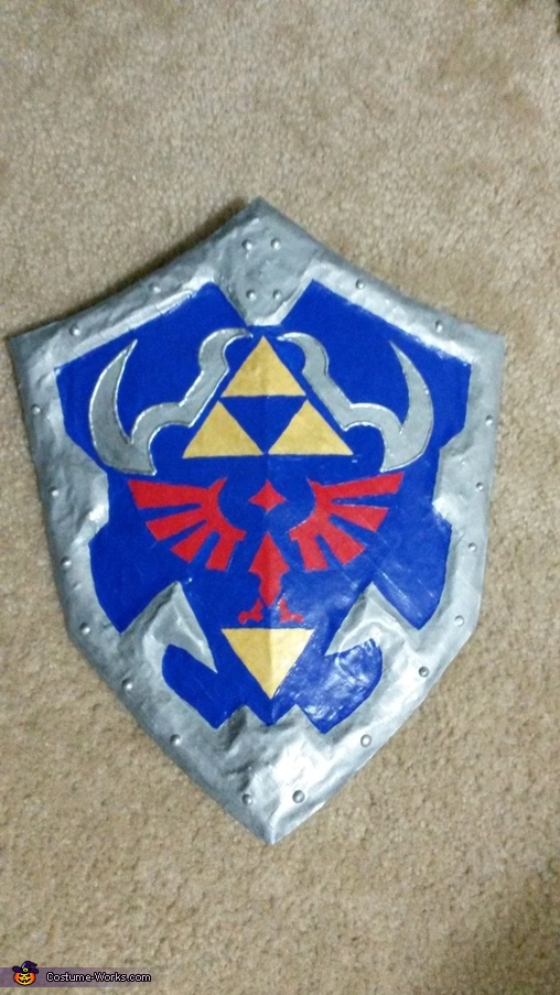 Shield Completed, The Legend of Zelda Link Costume