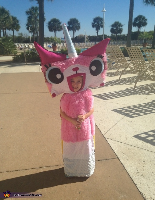 The Lego Movie Unikitty Homemade Costume